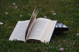 leitura estimula o cerebro
